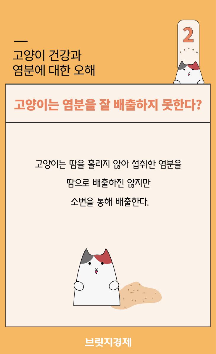 고양이와소금-04