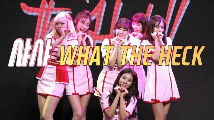 [브릿지영상] 샤샤, 소녀 감성 가득한 발랄한 컴백 무대 `WHAT THE HECK`