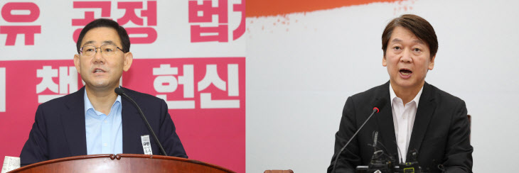 주호영 안철수