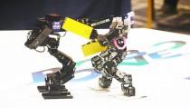 [B토막]휴머노이드 로봇 격투기