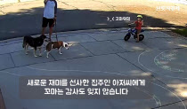 [SNS `픽`] 자전거 타고 앞마당 침범한 동네 꼬마…코스 그려준 집주인 `훈훈`